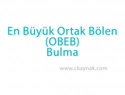 C Programlama Dili OBEB Bulma (Ortak Bölenlerin En Büyüğü)