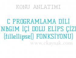 C Programlama Dili WinBGIm İçi Dolu Elips (fillellipse() Fonksiyonu)